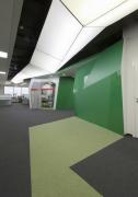绿色元素办公空间效果图