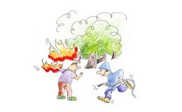 森林防火标语怎么写?森林防火标语大全