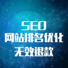 威客服务:[110810] 高端全站优化SEO优化关键字优化首页排名