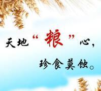 爱惜粮食,节约粮食标语标语集锦