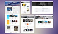 金融项目企业网站