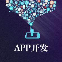 威客服务:[111107] app开发