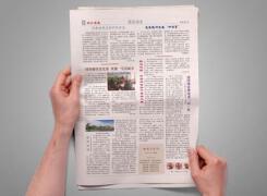 如何利用报纸广告进行营销?