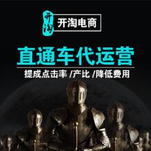 威客服务:[112436] 淘宝天猫京东拼多多直通车代运营托管