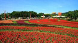 第十届中国花卉博览会会徽、吉祥物设计征集