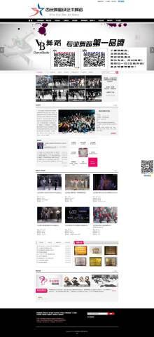 艺术舞蹈学校网站