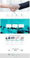 财税网站开发