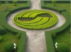 你见过这么高大上的花坛设计吗?美观的花坛设计图片整理欣赏