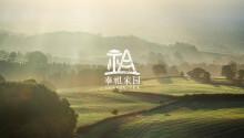 【奉祖家园】普洱茶叶  logo设计 包装设计