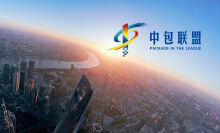 中包联盟网站开发