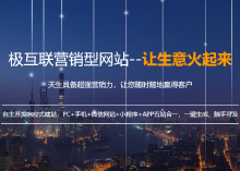 商城类网站开发