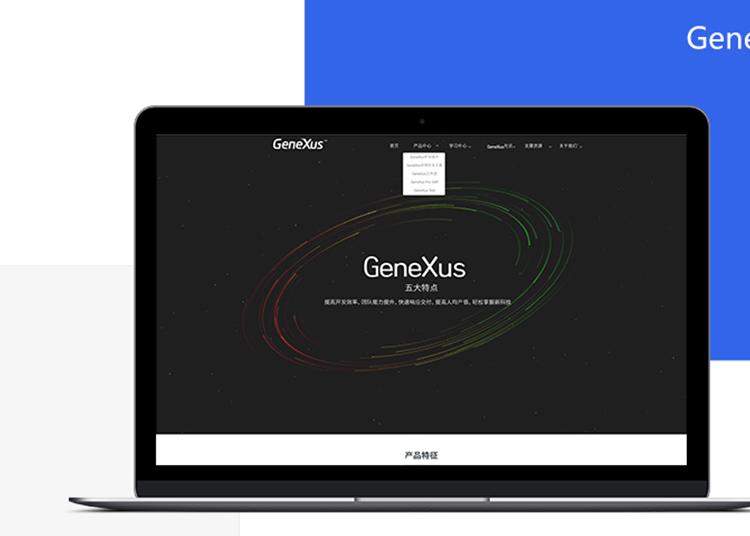 企业展示网站定制开发