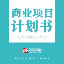 威客服务:[121880] 商业项目计划书