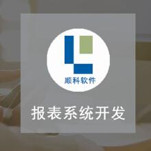 威客服务:[122724] 报表系统开发