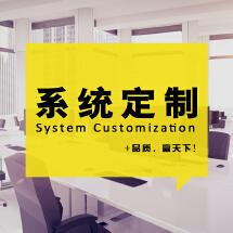 定制 订制 开发 设计 软件 程序 ERP OA CRM WMS 商城 系统