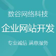 企业网站定制开发、二次开发