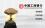 品牌全案品牌故事品牌起名策划互联网人物品牌包装企业愿景使命价值观总裁寄语广告牌品牌历程LOGO图文设计