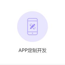 威客服务:[125325] APP定制开发