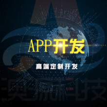 APP高端定制开发