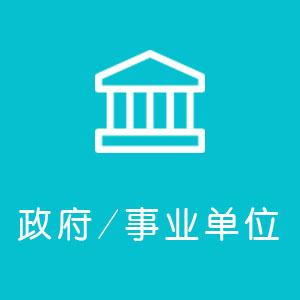 政府/事业单位网站开发