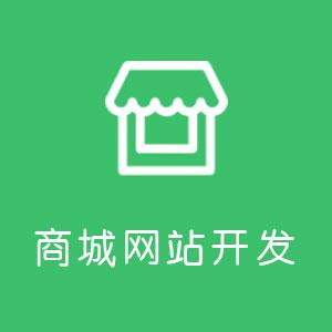 商城网站开发