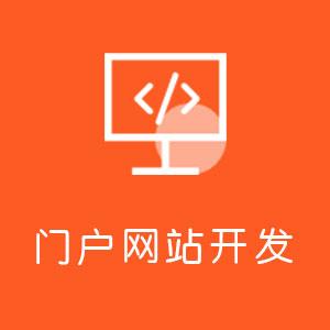 门户网站开发