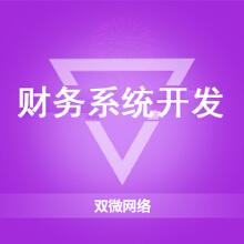 威客服务:[100504] 财务系统开发