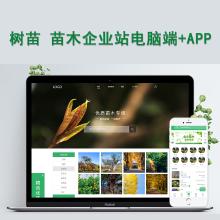 威客服务:[128307] 苗木种植售卖网站源码电脑端手机移动端APP后台管理绿色花木园林