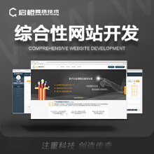 综合性网站开发