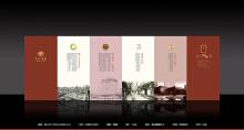 宣传册设计 | 金河宾馆DM折页策划设计与制作