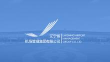 辽宁省机场管理集团官方网站开发