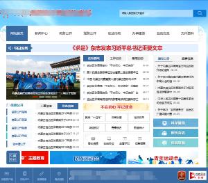 综合类网站开发实施服务