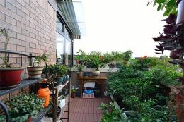N种阳台花园设计