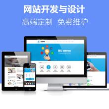 网站建设,网站制作,网页设计,专注高端定制开发服务