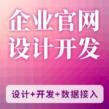 企业官网(设计+开发)