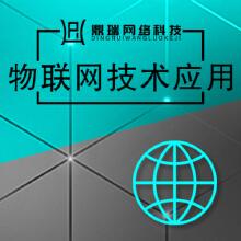 威客服务:[131251] 物联网技术应用:改变一切的数字智慧