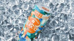 冰糖黄杏果汁饮料包装