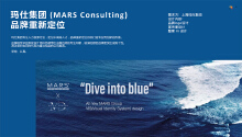 玛仕集团 (MARS Consulting) 品牌重新定位