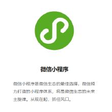 威客服务:[132165] 微信小程序开发