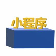 威客服务:[132864] 小程序定制开发