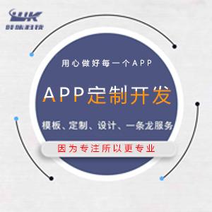各类手机app制作定做网站设计软件开发定制搭建一条龙定制设计
