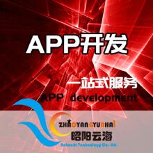 威客服务:[133602] App开发