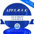 企业APP定制化开发