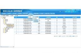 企业工资管理软件开发