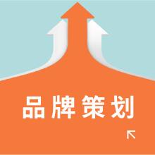 威客服务:[133746] 品牌策划/资深策划人+文案+设计/全案策划/实例见证