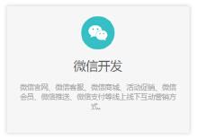 威客服务:[133968] 微信开发