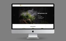 威客服务:[134107] 【网站定制开发】门户网站定制开发●网站建设●网站设计