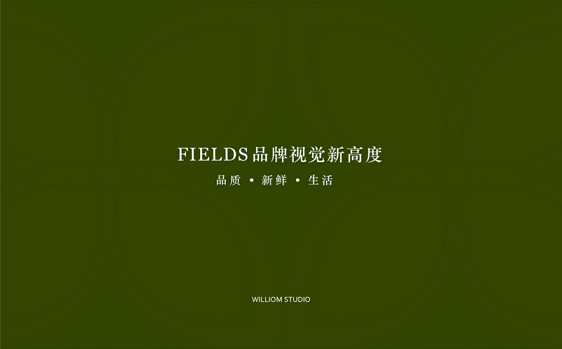 FIELDS电商—企业视觉识别系统设计