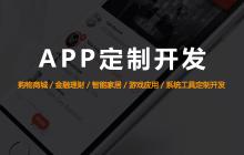 威客服务:[134481] APP定制开发