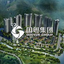 国粤集团网站开发案例